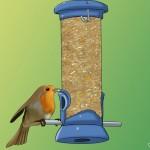 آموزش پرورش طیور : نحوه غذا دادن به پرندگان