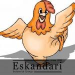 نکاتی درباره پرورش مرغ