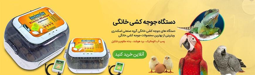 small_egg_incubator_banner