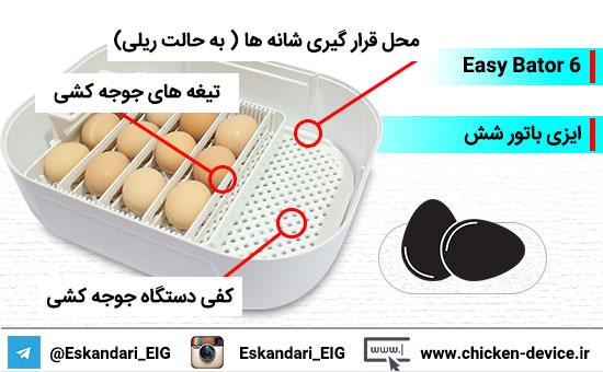 تخم های نطفه دار ایزی باتور شش