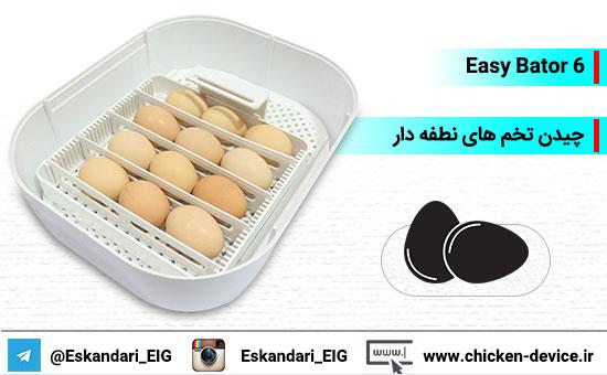 چیدن تخم های نطفه دار داخل دستگاه