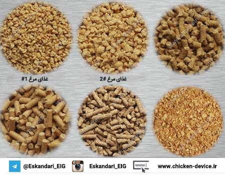 غذای مرغ راه اندازی خط تولید خوراک طیور