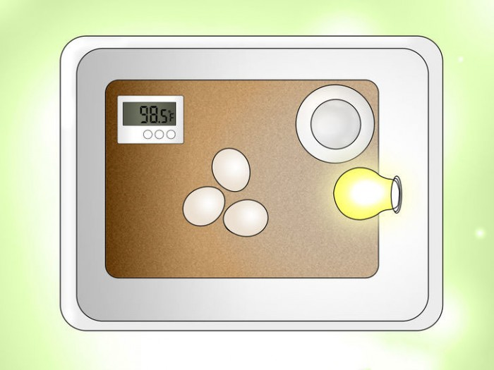 دمای دستگاه جوجه کشی