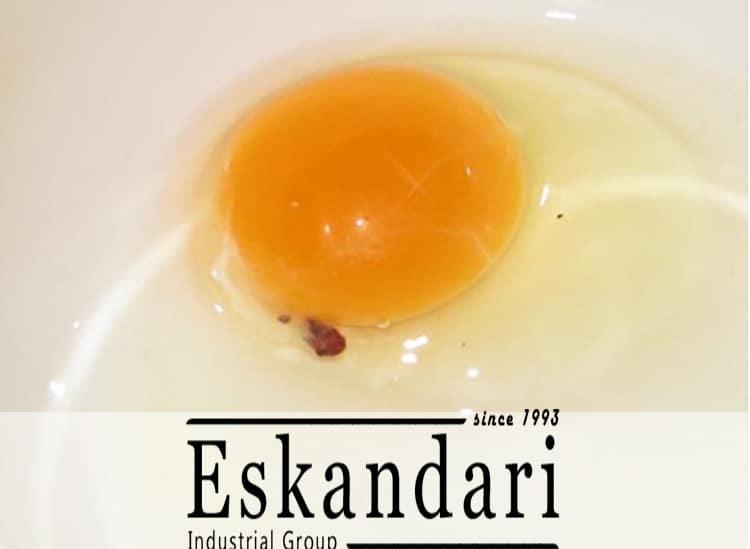 بررسی کیفیت تخم مرغ