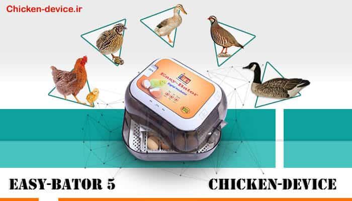 ایزی باتور 5 - ماشین جوجه کشی ارزان اسکندری
