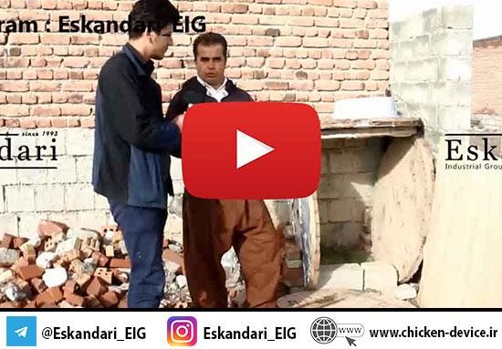 خرید و نگهداری تخم نطفه دار غاز – احمدیان