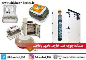 دستگاه جوجه کشی خارجی بخریم یا داخلی