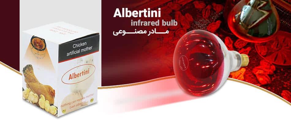 infrared bulb for chicks eskandarı