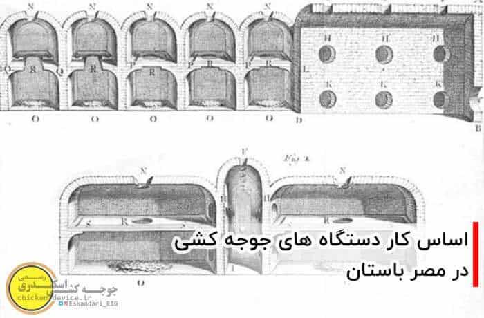 تاریخچه دستگاه جوجه کشی مصریان مصر باستان