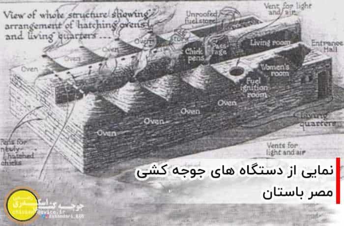دستگاه جوجه کشی مصر باستان