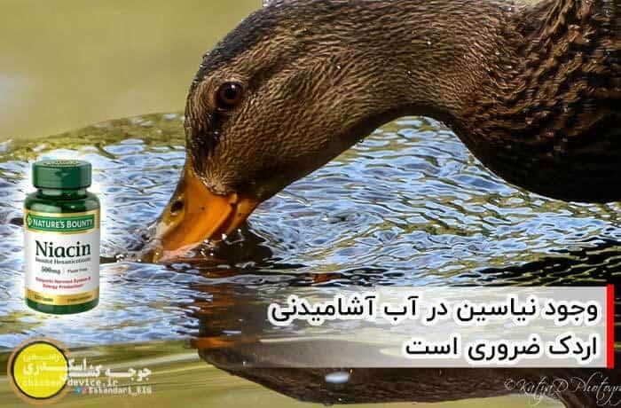 نیاسین در آب اردک