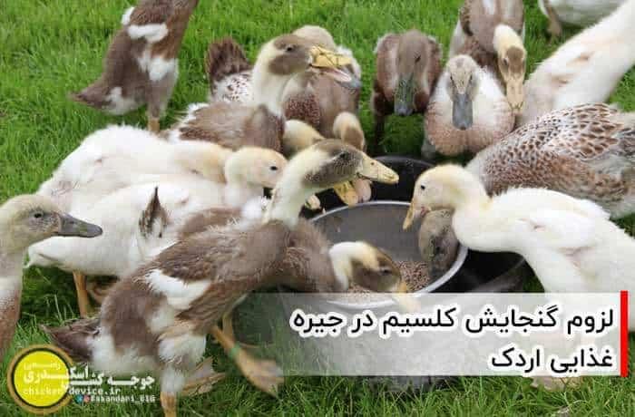 کلسیم در غذای اردک