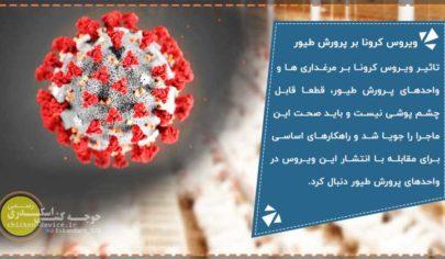 تاثیر ویروس کرونا بر واحد های پرورش طیور