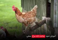 Learn-how-to-make-a-local-chicken-nest